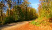 Trail Walk LONGPONT - en forêt de Retz_24_Longpont_MF du Rond de la Reine_AR - Photo 68
