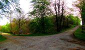 Trail Walk LONGPONT - en forêt de Retz_24_Longpont_MF du Rond de la Reine_AR - Photo 49