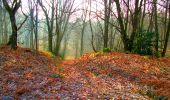 Trail Walk LONGPONT - en forêt de Retz_24_Longpont_MF du Rond de la Reine_AR - Photo 25