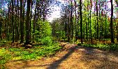 Trail Walk LONGPONT - en forêt de Retz_24_Longpont_MF du Rond de la Reine_AR - Photo 91