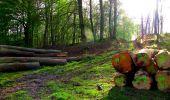 Trail Walk LONGPONT - en forêt de Retz_24_Longpont_MF du Rond de la Reine_AR - Photo 44