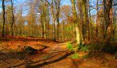 Trail Walk LONGPONT - en forêt de Retz_24_Longpont_MF du Rond de la Reine_AR - Photo 54