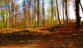 Trail Walk LONGPONT - en forêt de Retz_24_Longpont_MF du Rond de la Reine_AR - Photo 63