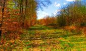 Trail Walk LONGPONT - en forêt de Retz_24_Longpont_MF du Rond de la Reine_AR - Photo 140