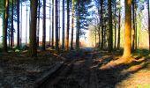 Trail Walk LONGPONT - en forêt de Retz_24_Longpont_MF du Rond de la Reine_AR - Photo 5