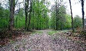Trail Walk LONGPONT - en forêt de Retz_24_Longpont_MF du Rond de la Reine_AR - Photo 12