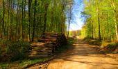 Trail Walk LONGPONT - en forêt de Retz_24_Longpont_MF du Rond de la Reine_AR - Photo 99