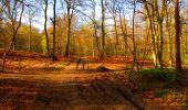 Trail Walk LONGPONT - en forêt de Retz_24_Longpont_MF du Rond de la Reine_AR - Photo 55