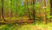 Trail Walk LONGPONT - en forêt de Retz_24_Longpont_MF du Rond de la Reine_AR - Photo 129