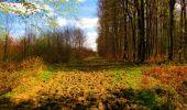 Trail Walk LONGPONT - en forêt de Retz_24_Longpont_MF du Rond de la Reine_AR - Photo 134