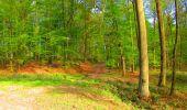Trail Walk LONGPONT - en forêt de Retz_24_Longpont_MF du Rond de la Reine_AR - Photo 46