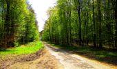 Trail Walk LONGPONT - en forêt de Retz_24_Longpont_MF du Rond de la Reine_AR - Photo 122
