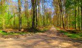 Trail Walk LONGPONT - en forêt de Retz_24_Longpont_MF du Rond de la Reine_AR - Photo 93