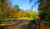 Trail Walk LONGPONT - en forêt de Retz_24_Longpont_MF du Rond de la Reine_AR - Photo 79