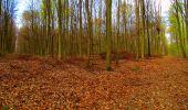 Trail Walk LONGPONT - en forêt de Retz_24_Longpont_MF du Rond de la Reine_AR - Photo 43