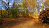 Trail Walk LONGPONT - en forêt de Retz_24_Longpont_MF du Rond de la Reine_AR - Photo 52