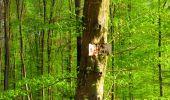 Trail Walk LONGPONT - en forêt de Retz_24_Longpont_MF du Rond de la Reine_AR - Photo 53