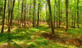 Trail Walk LONGPONT - en forêt de Retz_24_Longpont_MF du Rond de la Reine_AR - Photo 104