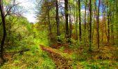 Trail Walk LONGPONT - en forêt de Retz_24_Longpont_MF du Rond de la Reine_AR - Photo 128
