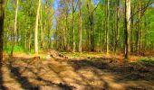 Trail Walk LONGPONT - en forêt de Retz_24_Longpont_MF du Rond de la Reine_AR - Photo 102