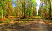 Trail Walk LONGPONT - en forêt de Retz_24_Longpont_MF du Rond de la Reine_AR - Photo 109