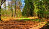 Trail Walk LONGPONT - en forêt de Retz_24_Longpont_MF du Rond de la Reine_AR - Photo 149