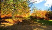Trail Walk LONGPONT - en forêt de Retz_24_Longpont_MF du Rond de la Reine_AR - Photo 165
