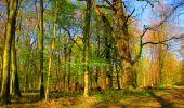 Trail Walk LONGPONT - en forêt de Retz_24_Longpont_MF du Rond de la Reine_AR - Photo 86