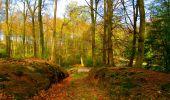 Trail Walk LONGPONT - en forêt de Retz_24_Longpont_MF du Rond de la Reine_AR - Photo 45