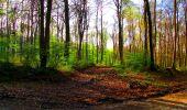 Trail Walk LONGPONT - en forêt de Retz_24_Longpont_MF du Rond de la Reine_AR - Photo 66