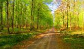 Trail Walk LONGPONT - en forêt de Retz_24_Longpont_MF du Rond de la Reine_AR - Photo 103