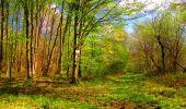 Trail Walk LONGPONT - en forêt de Retz_24_Longpont_MF du Rond de la Reine_AR - Photo 126
