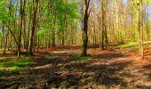 Trail Walk LONGPONT - en forêt de Retz_24_Longpont_MF du Rond de la Reine_AR - Photo 112
