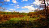 Trail Walk LONGPONT - en forêt de Retz_24_Longpont_MF du Rond de la Reine_AR - Photo 138