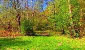 Trail Walk LONGPONT - en forêt de Retz_24_Longpont_MF du Rond de la Reine_AR - Photo 132