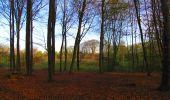 Trail Walk LONGPONT - en forêt de Retz_24_Longpont_MF du Rond de la Reine_AR - Photo 34