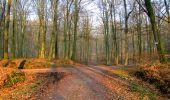Trail Walk LONGPONT - en forêt de Retz_24_Longpont_MF du Rond de la Reine_AR - Photo 22