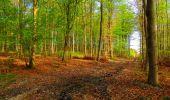Trail Walk LONGPONT - en forêt de Retz_24_Longpont_MF du Rond de la Reine_AR - Photo 38