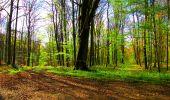 Trail Walk LONGPONT - en forêt de Retz_24_Longpont_MF du Rond de la Reine_AR - Photo 72