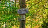 Trail Walk LONGPONT - en forêt de Retz_24_Longpont_MF du Rond de la Reine_AR - Photo 82