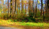 Trail Walk LONGPONT - en forêt de Retz_24_Longpont_MF du Rond de la Reine_AR - Photo 69