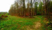 Trail Walk LONGPONT - en forêt de Retz_24_Longpont_MF du Rond de la Reine_AR - Photo 152