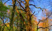 Trail Walk LONGPONT - en forêt de Retz_24_Longpont_MF du Rond de la Reine_AR - Photo 87