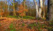 Trail Walk LONGPONT - en forêt de Retz_24_Longpont_MF du Rond de la Reine_AR - Photo 36