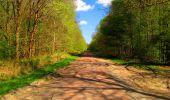 Trail Walk LONGPONT - en forêt de Retz_24_Longpont_MF du Rond de la Reine_AR - Photo 133
