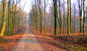 Trail Walk LONGPONT - en forêt de Retz_24_Longpont_MF du Rond de la Reine_AR - Photo 20