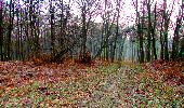Trail Walk LONGPONT - en forêt de Retz_24_Longpont_MF du Rond de la Reine_AR - Photo 24