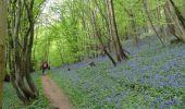 Trail Walk Thuin - Marche Adeps à Biesme-sous-Thuin - Photo 3