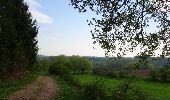 Trail Walk Thuin - Marche Adeps à Biesme-sous-Thuin - Photo 5