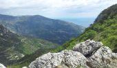 Randonnée Marche SAINTE-AGNES - Cime de Baudon depuis St Agnès - Photo 10